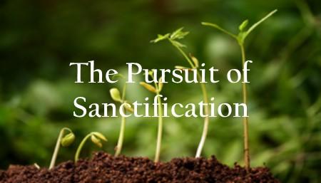 The Pursuit of Sanctification